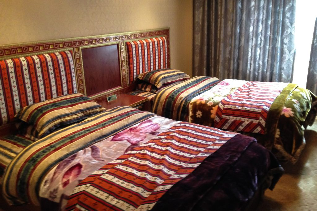 Drolma Hotel is run by disabled Tibetans and supported by eco tourism company Tibet Highland Tours, Tibet