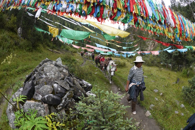 Horse trekking in Amdo, a greater tourism activity organized by local tibetan tour companies