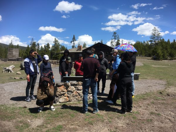 National park management training in yellow stone National Park, USA