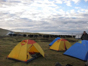 Camping with nomads in Amdo
